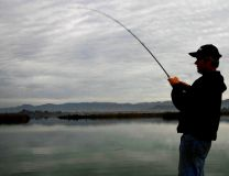 Captain-Aussie-Wombat-Charters-Napa-River-Striper-Fishing.jpg